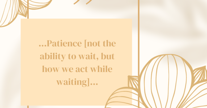 MAY: Patience image